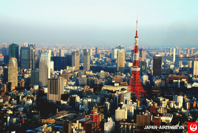 ve may bay japan airlines gia re