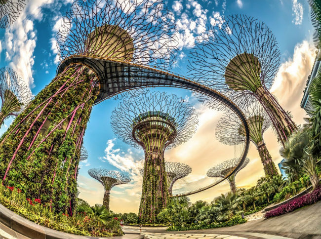 du-lich-singapore-2-30-11-2016