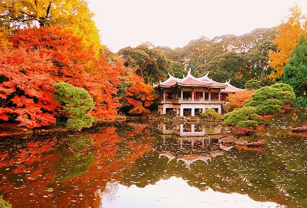 ve-may-bay-tu-ha-noi-di-tokyo-gia-re-25-9-2018-7