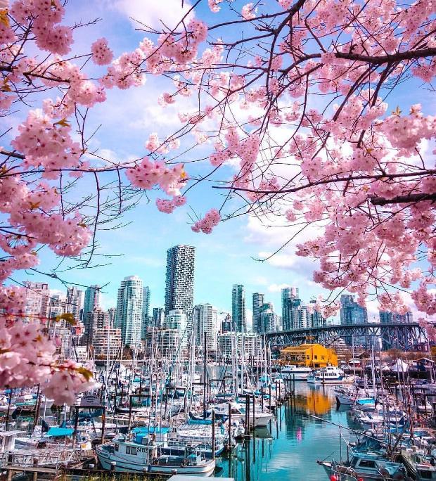 Đi Vancouver